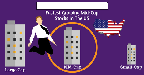 100 fastest growing mid cap stocks in the us netcials we have considered all the mid cap stocks listed in the nasdaq these stocks have market capitalization between 1 billion to malvernweather Images